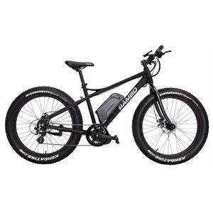 fat bike 750w noir mat